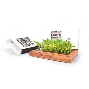 Earth Day Plant-A-Gram Planting Kit - Stock Design A